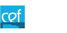 imagencoaching | logo-CursosEfectivos